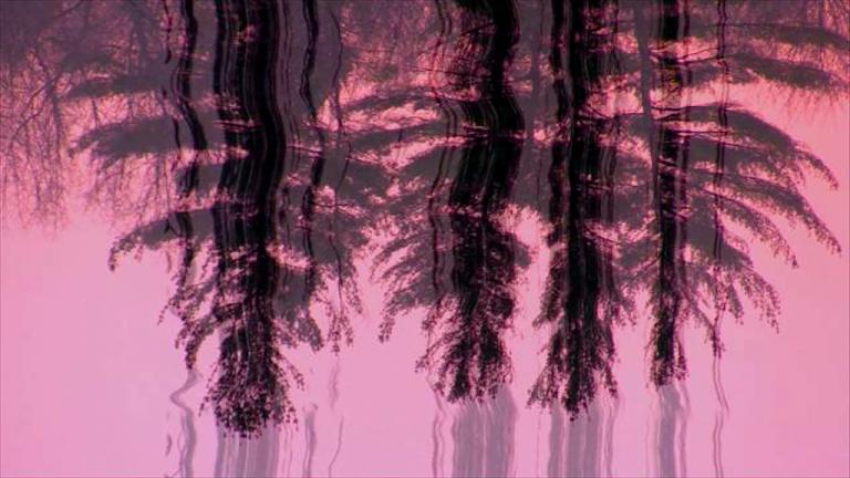 01_AOE_pink